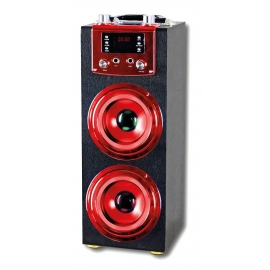 Altavoz Karaoke GR-WSK115