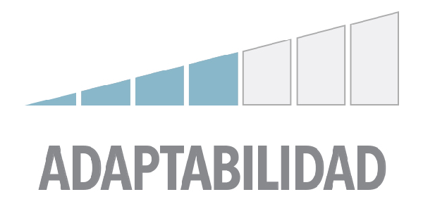 Adaptabilidad 4
